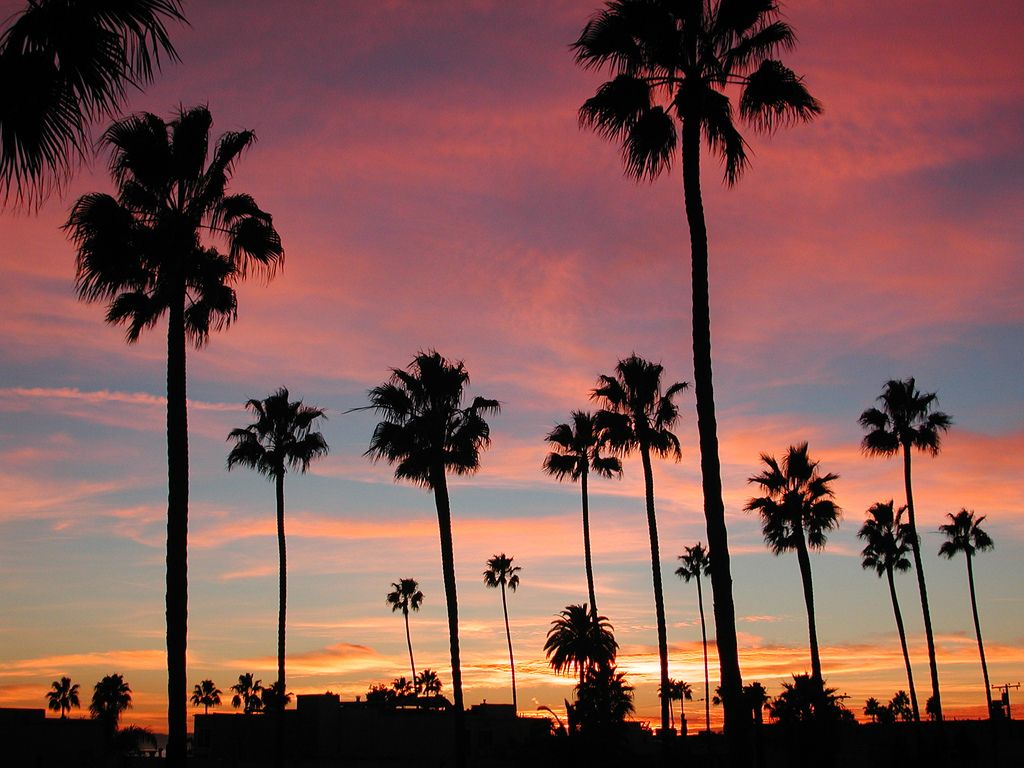 Long Beach, California Sunset