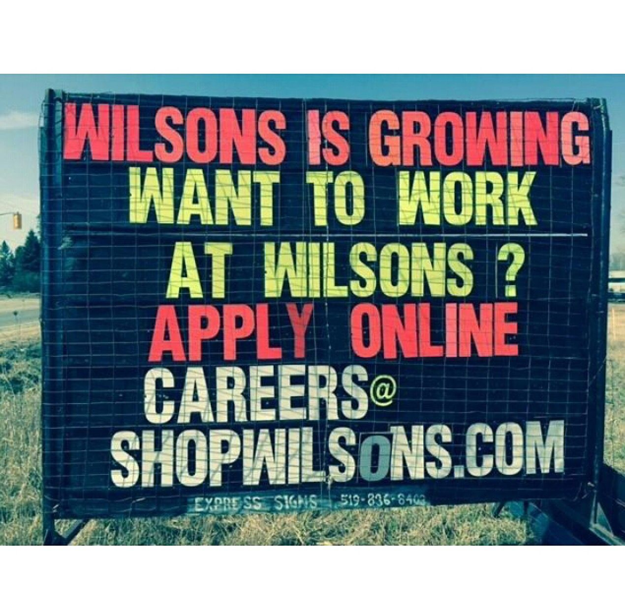 i want an exciting career