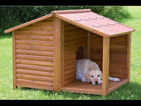 DIY dog house for 2 large dogs Crafts
