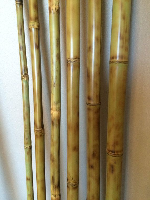 """Martial Arts Wooden Bo Staff Striped Bamboo Straight 60/"""" 5ft Sticks Bong"""