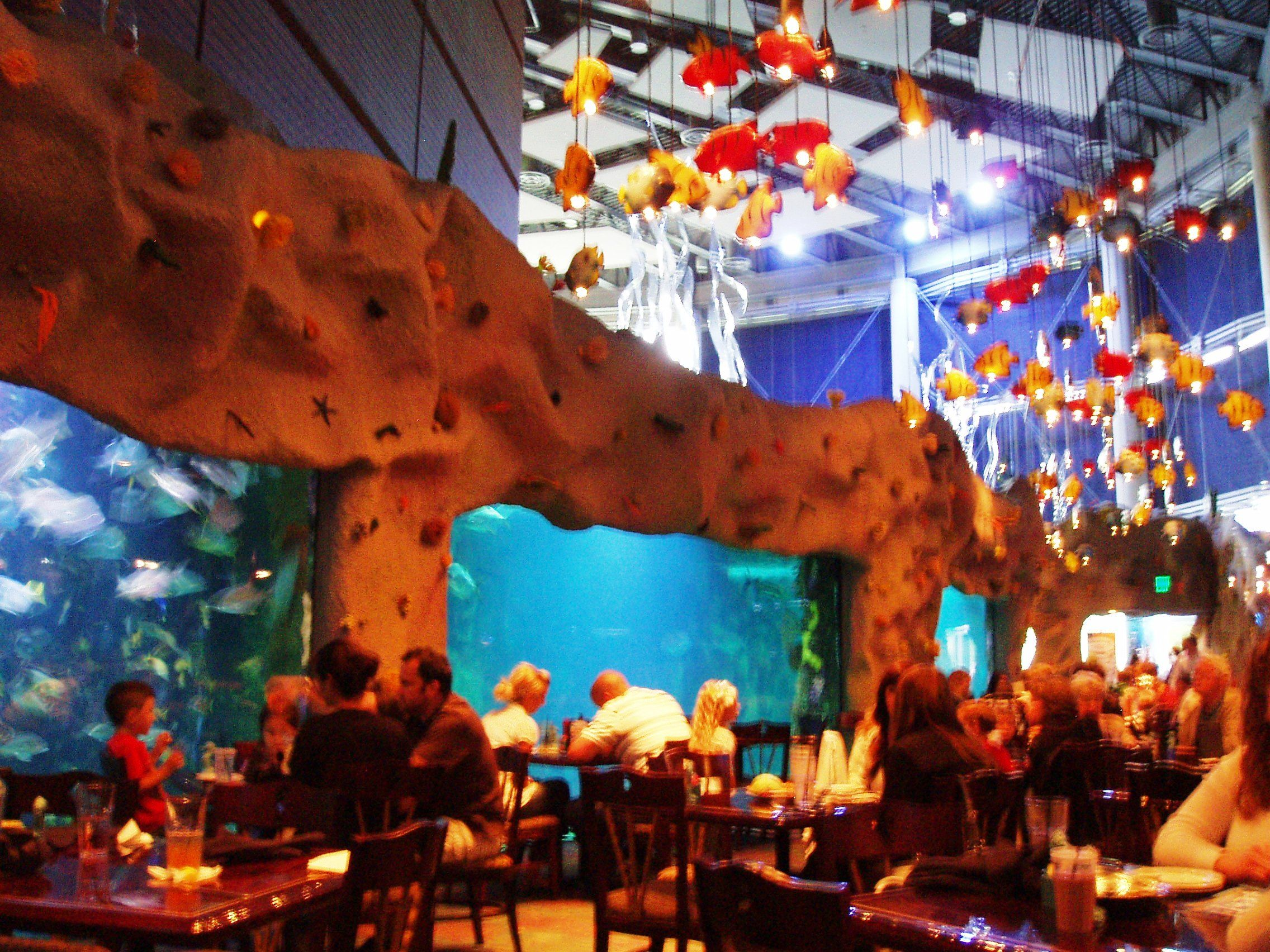 Fish aquarium in downtown toronto - Denver S Downtown Aquarium Dinner Is Good Here And Don T Miss The