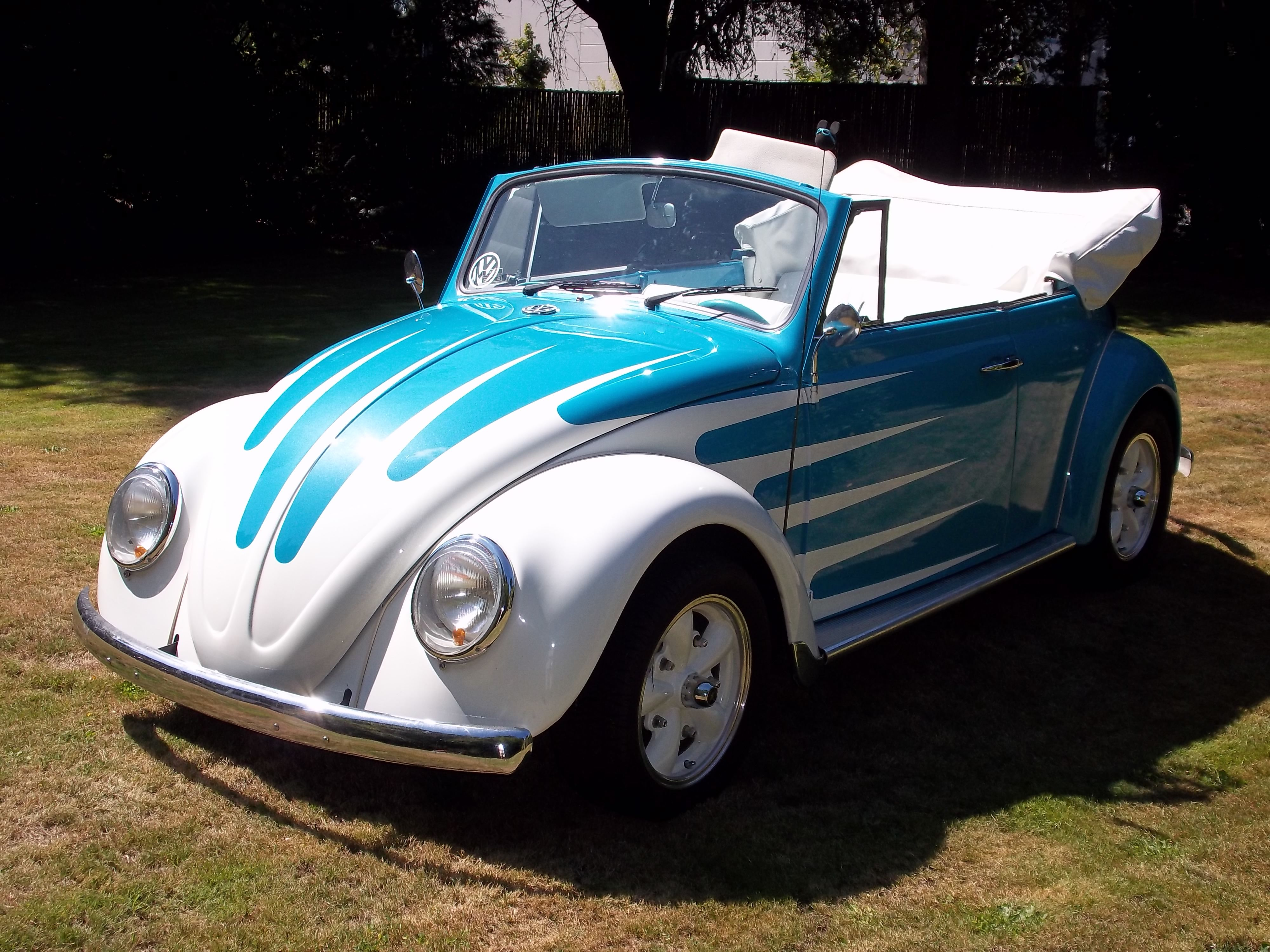 classic beetle paint jobs  volkswagen beetle fairview    dub love pinterest