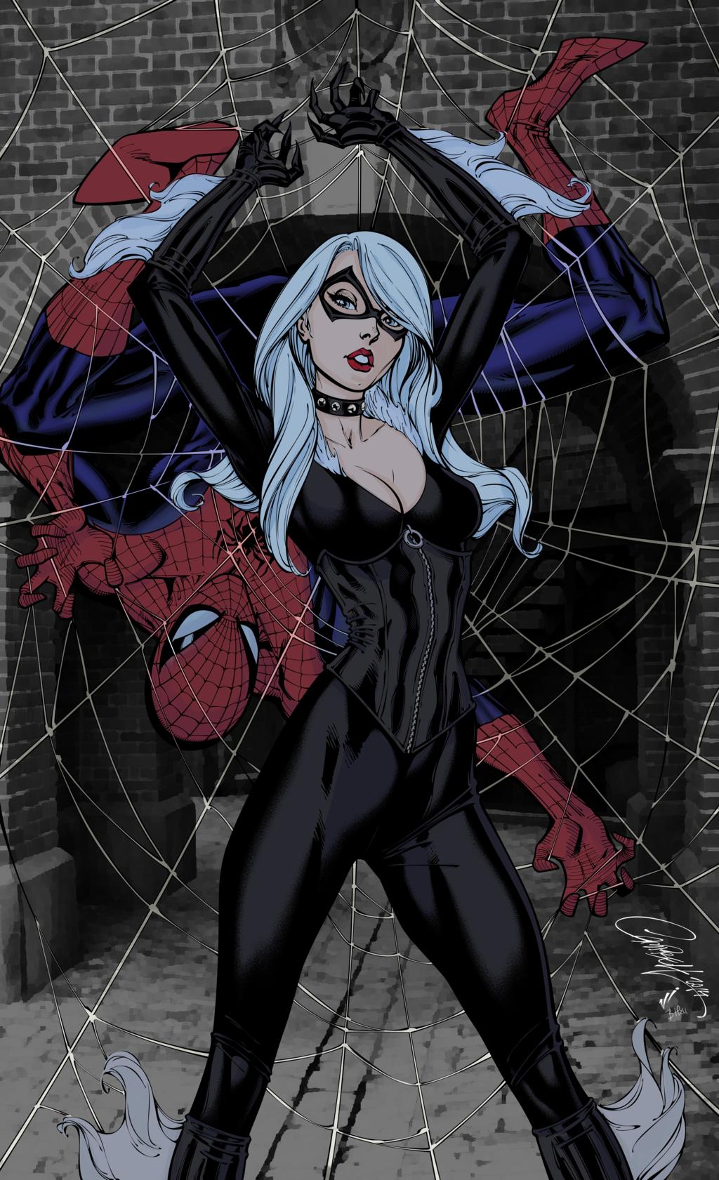 Spider Man And Black Cat J Scott Campbell Color Black Cat Marvel Spiderman Black Cat Comics Girls