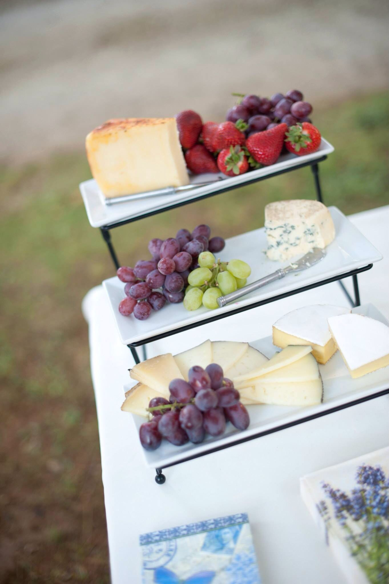Cheese and fruit platter for wedding appetizers travel or