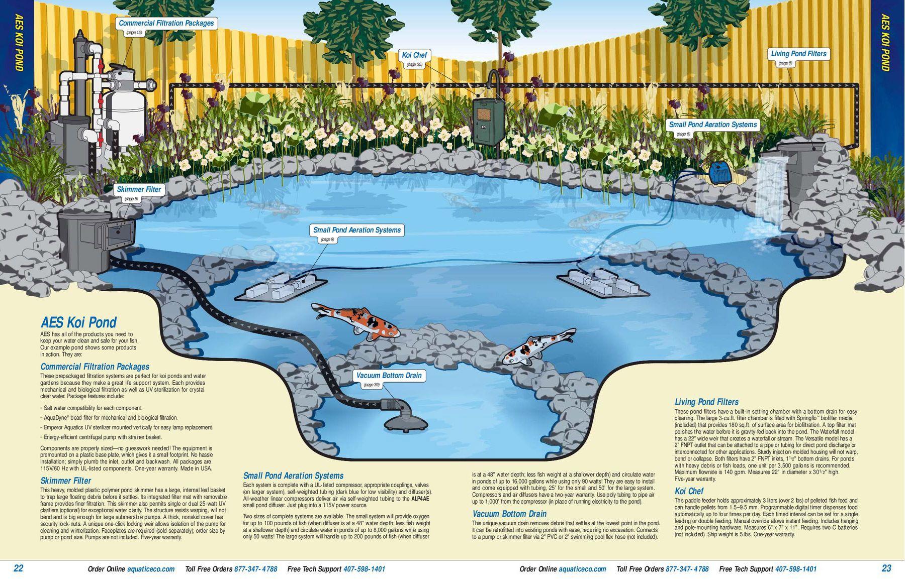 0d7ae5f0d712d1b144a24d303d32ee5f Luxe De Gravier Aquarium Des Idées