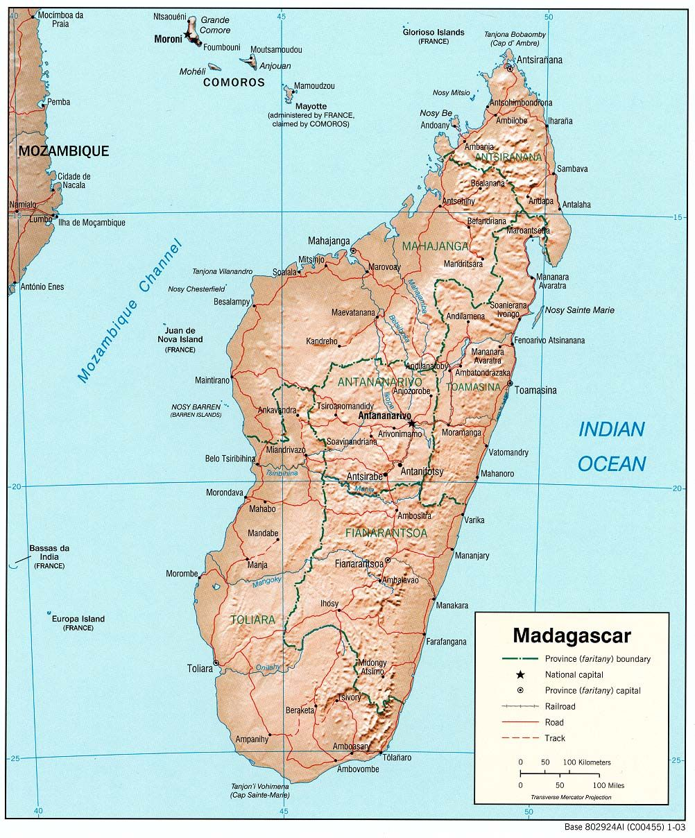 Pin by katy matthews on Madagascar think day in 2019