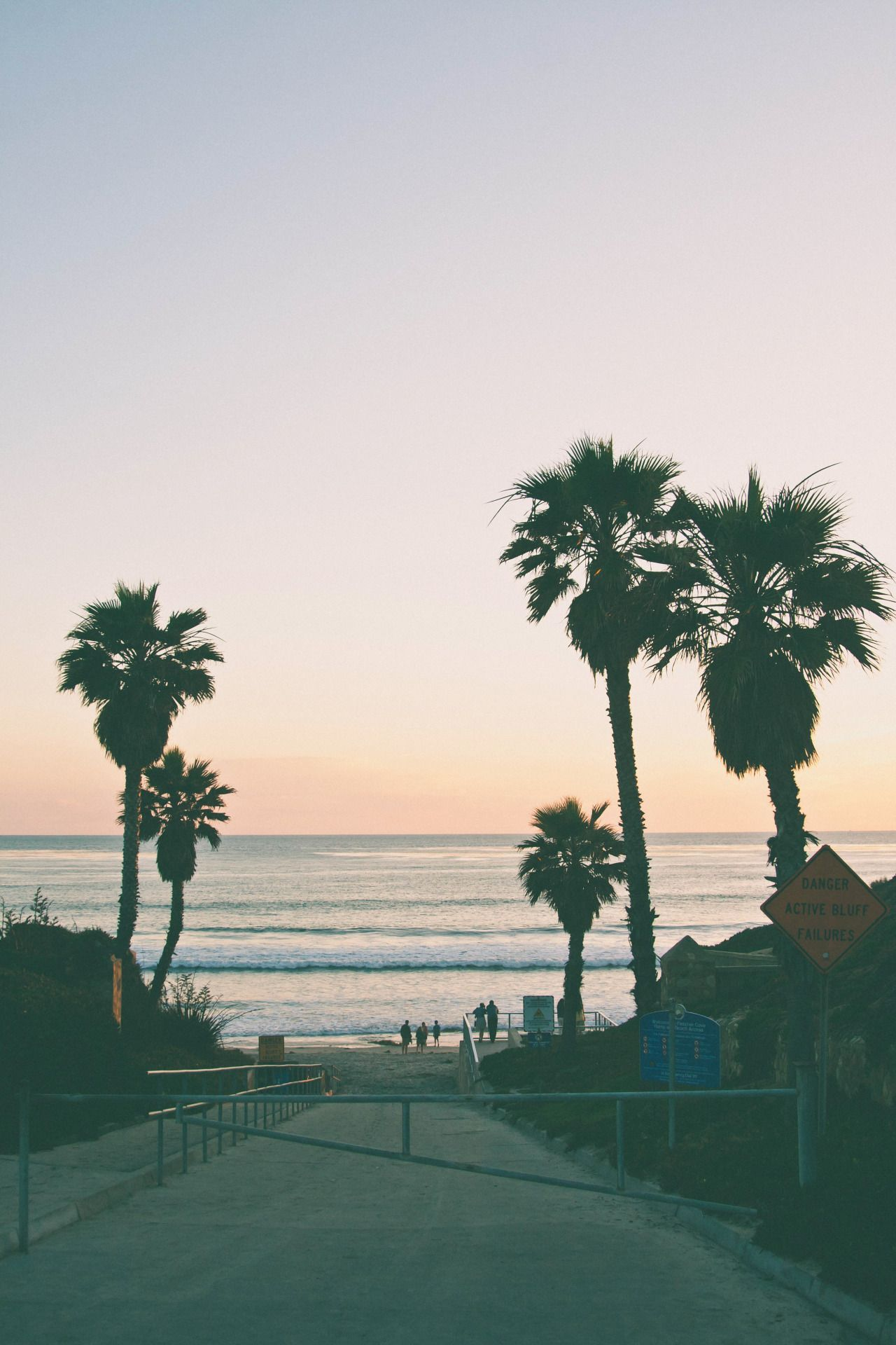 Good Kid M A A D City With Images Palm Trees Tumblr Palm