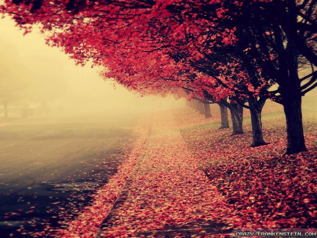 beautiful autumn wallpapers seasonal crazy frankenstein   wallpapers