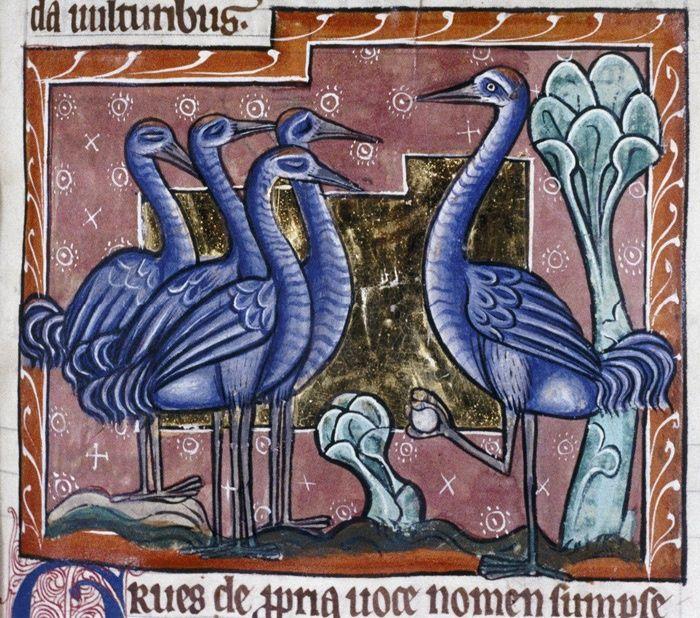 Image result for medieval manuscript crane flock