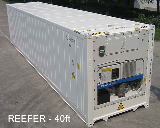 Aerolines Reefer 40ft Http Www Aerolines Ch Containers For Sale Reefer Container Building Systems