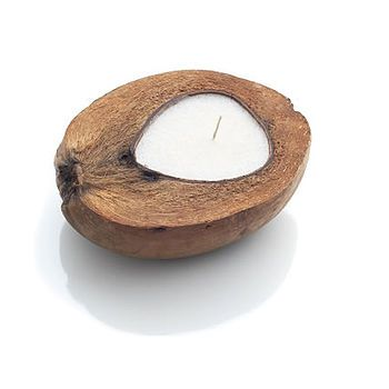 A Organic Coconut Candle In Natural Husk