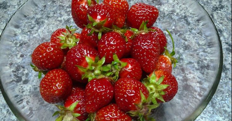 Farmer Shares Trick To Keeping Strawberries Fresh In The