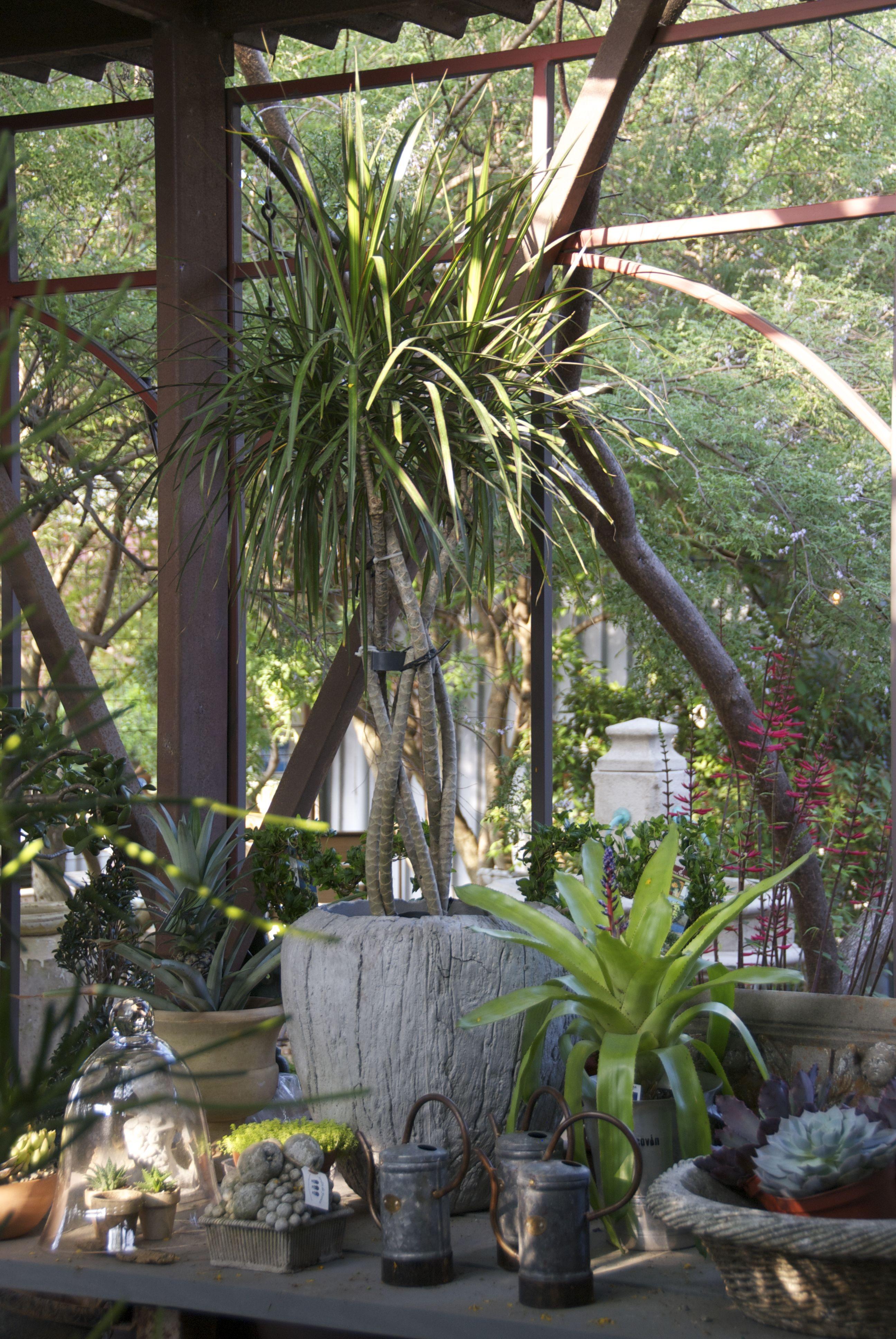 Jardin De France patglo68 on Pinterest