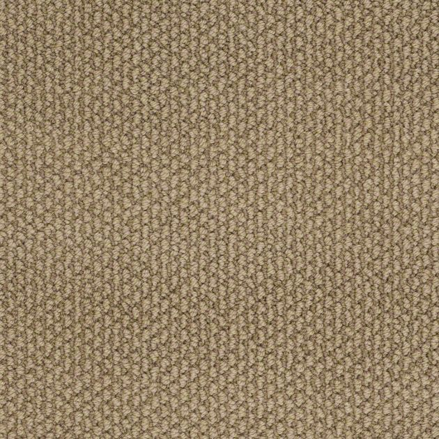 Color Changing Carpet