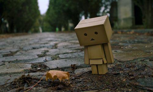 http://4.bp.blogspot.com/-Lwt0Gcq8k5w/TZS9jZoX93I/AAAAAAAAAe4/gf61f9P2j-0/s1600/leaf-with-danbo.jpg