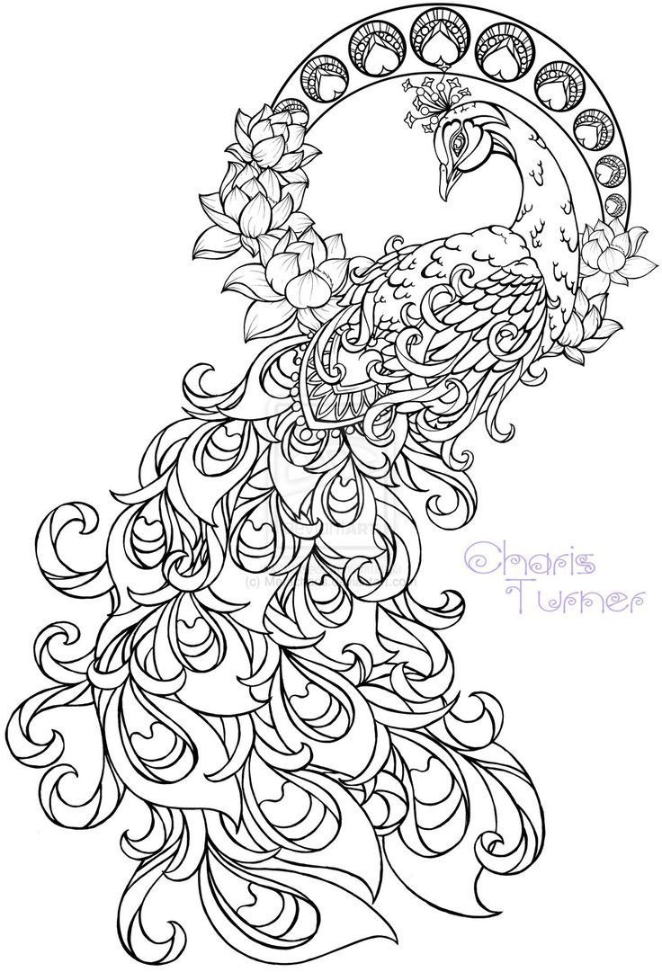 Tattoo designs coloring book - Realistic Peacock Coloring Pages Free Coloring Page Printable Color Me Happy Pinterest Peacocks Free And Adult Coloring
