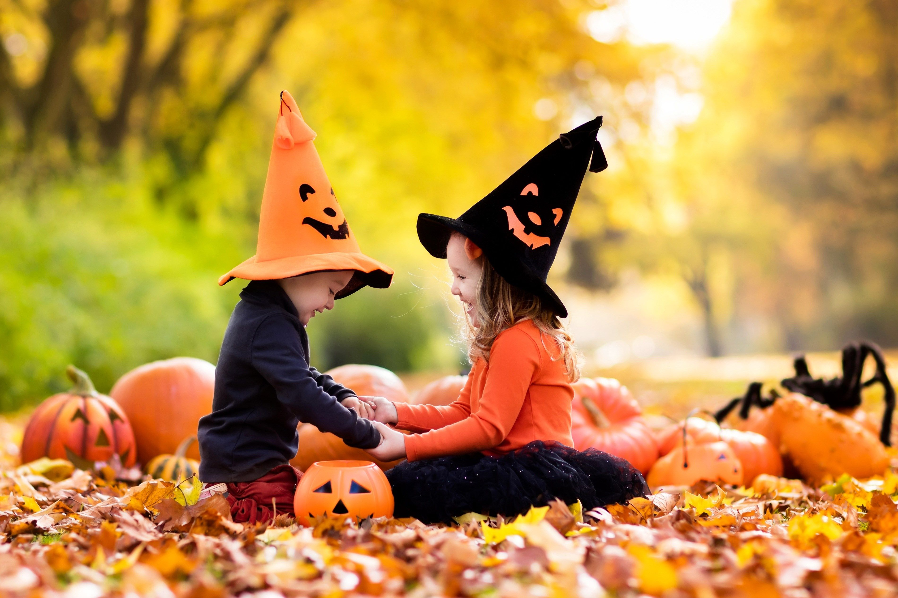 3800x2533 Free Download Halloween Halloween Wallpaper Halloween Kids Halloween Wallpaper Backgrounds