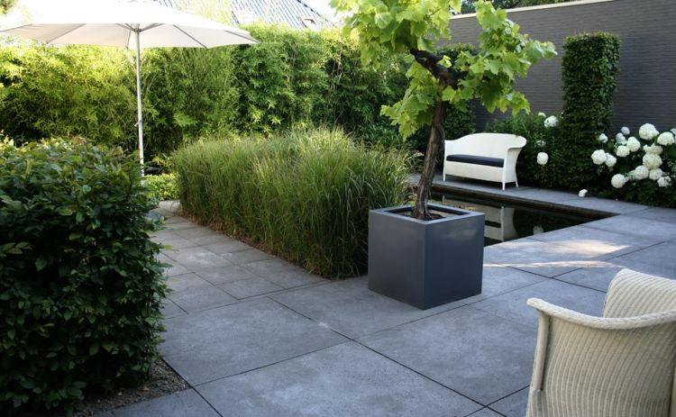Ideen zur gartengestaltung modern pflanzk bel baum betonplatten heckenpflanzen gardening - Moderne gartendeko ...