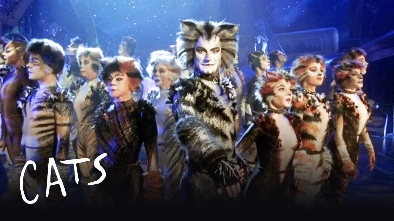 The Invitation to the Jellicle Ball Cats the Musical