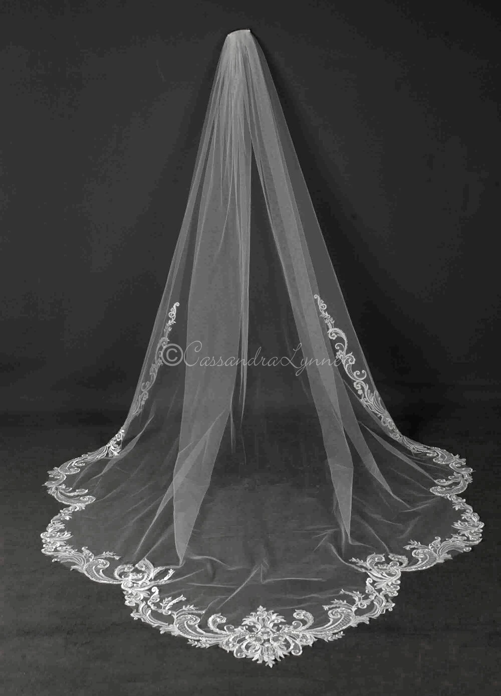 Cathedral Veil With Swirling Beaded Lace In 2020 Wedding Veils Lace Cathedral Veil Cathedral Wedding Veils