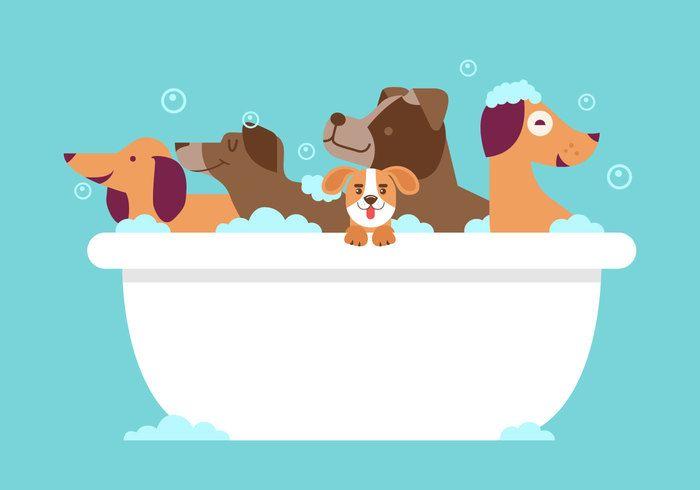 Dog Wash Vector Con Imagenes Imagenes De Perros Animados