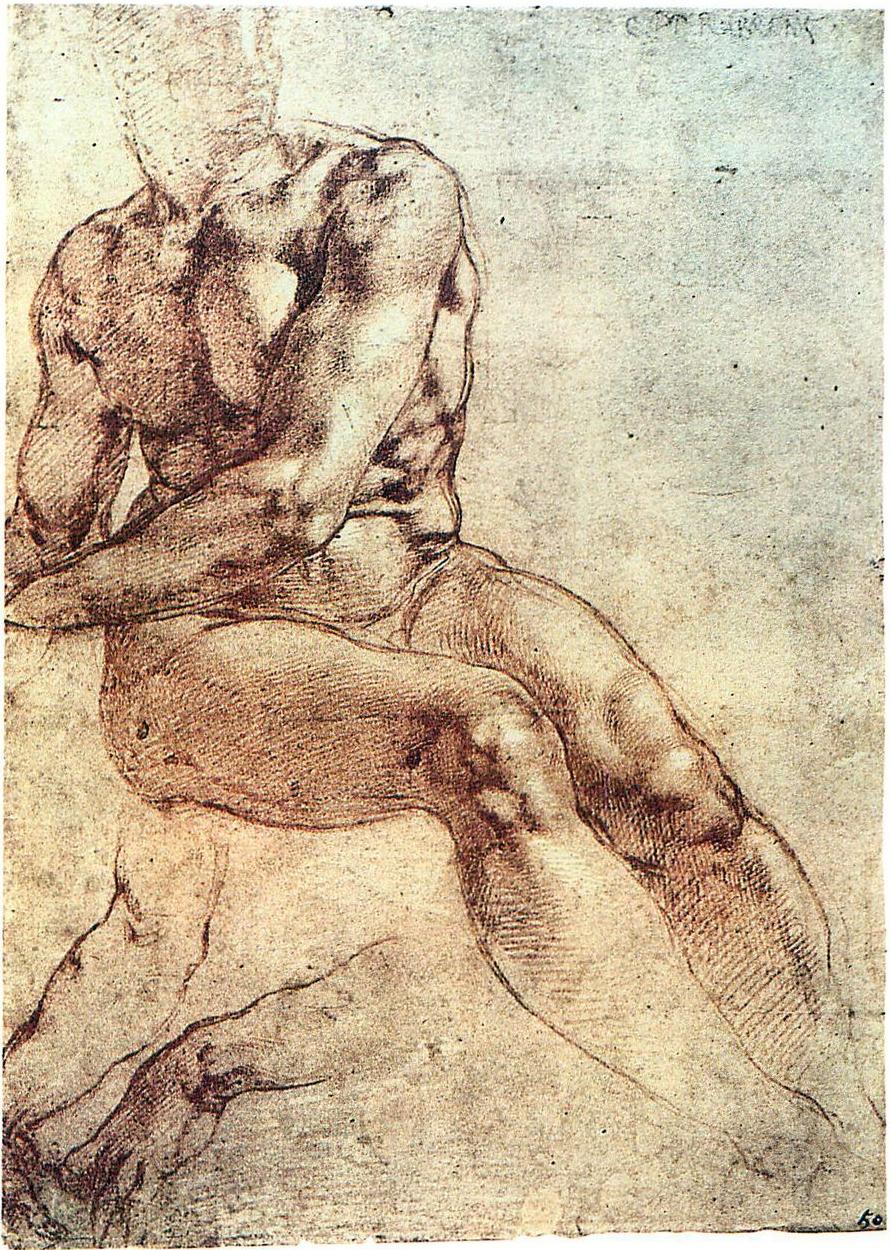 Michelangelo - Studio di un nudo maschile