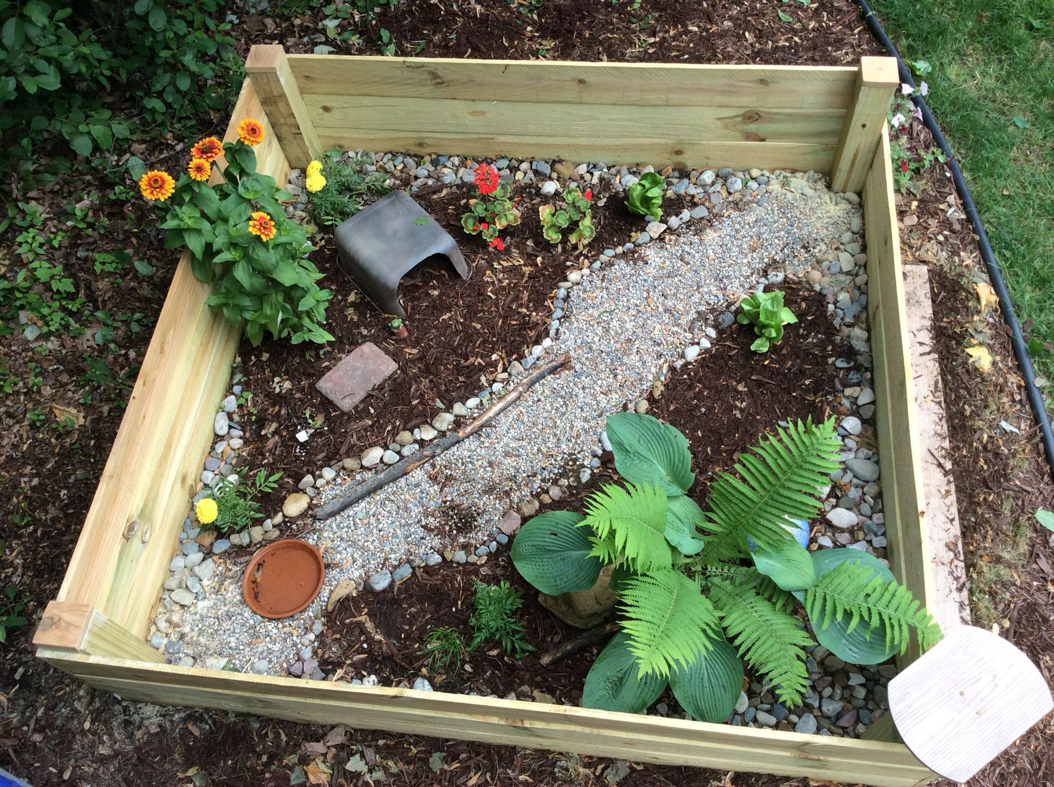 Outdoor tortoise enclosure made using cedar fence boards all in