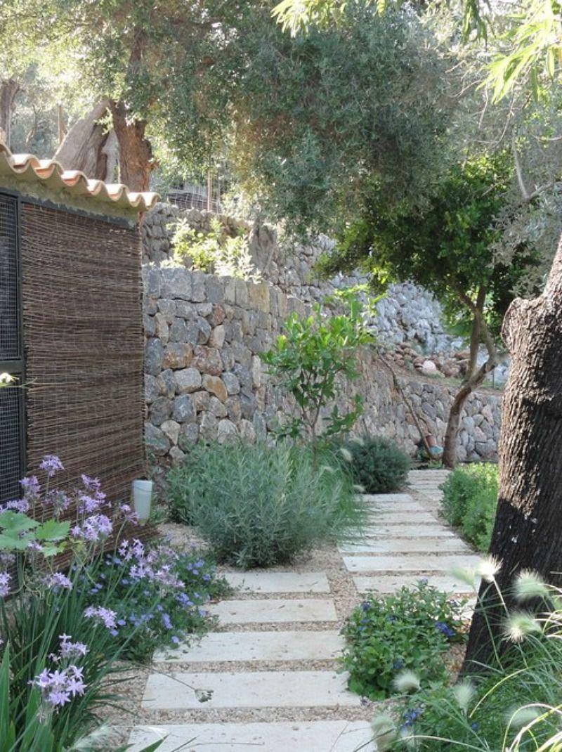 Con m nimos recursos bajo mantenimiento y exuberante for Plantas jardin mediterraneo