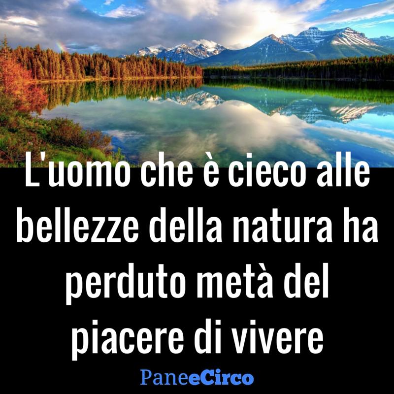 Pane e Circo on Tumblr | Citazioni sulla natura, Citazioni, Citazioni sulla  bellezza