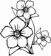 Big Flower Colouring Pages Printable Flower Coloring Pages