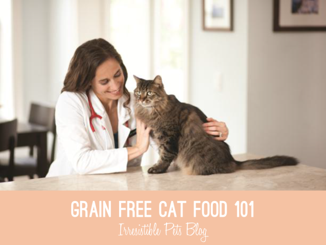 the truth about grain free cat food hills science diet cat food giveaway