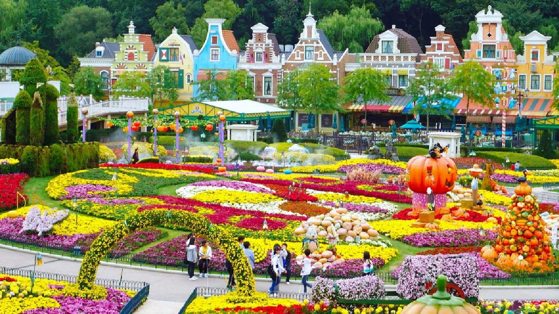 HD Everland wallpaper | Everland wallpapers hd | South korea travel, Seoul korea и South Korea