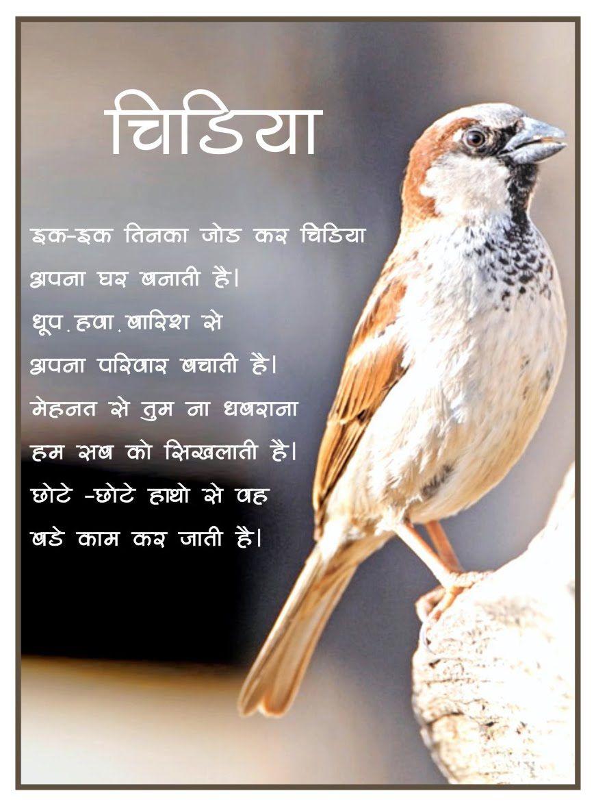 Akshar- Hindi Poems: Chidiyya (Sparrow) | kids | Pinterest