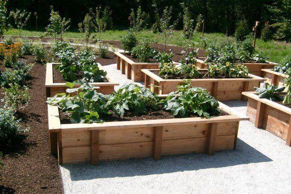 Home Gardening Raised Vegetable Garden Ideas Rectangular Beds Gravel Paths