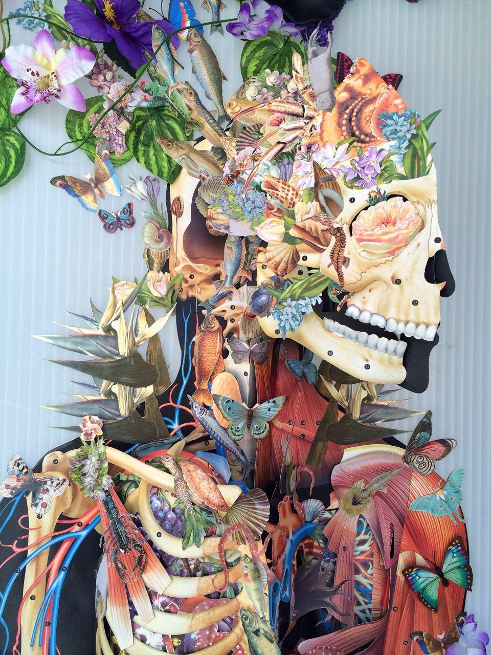 Bedelgeuse | Skull&flowers. | Pinterest | Anatomía, Medicina y ...