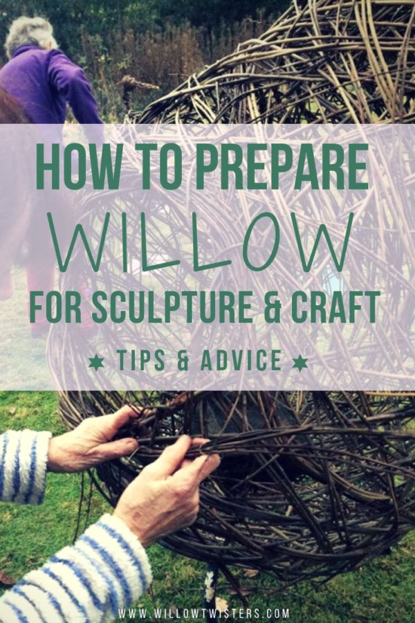 How to prepare willow for sculpture & craft - TIPS & ADVICE - WillowTwisters