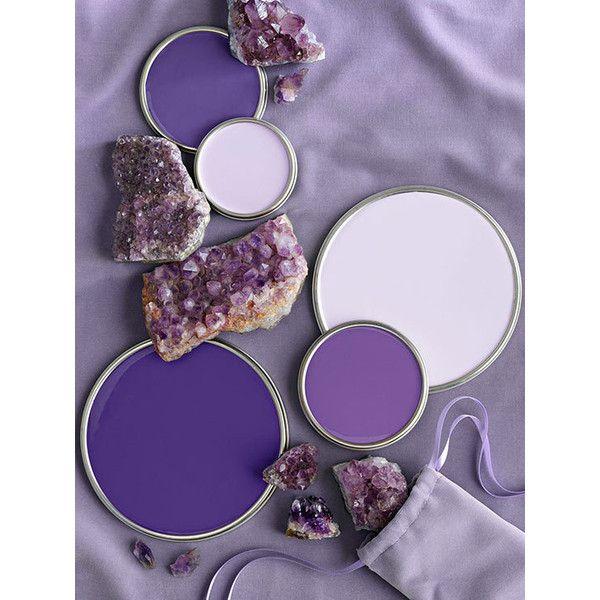 Fresh Purple Paint Colours