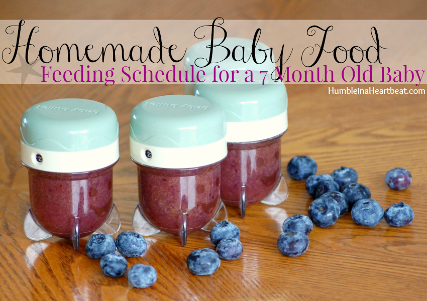 during the second month of homemade baby food baby ate blueberries summer squash melon and plenty of other purees find out the cost and time it took to