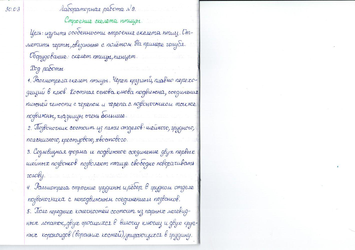 Решебник по математике класс пнш контроные работы atexic  Решебник по математике 3 класс пнш контроные работы