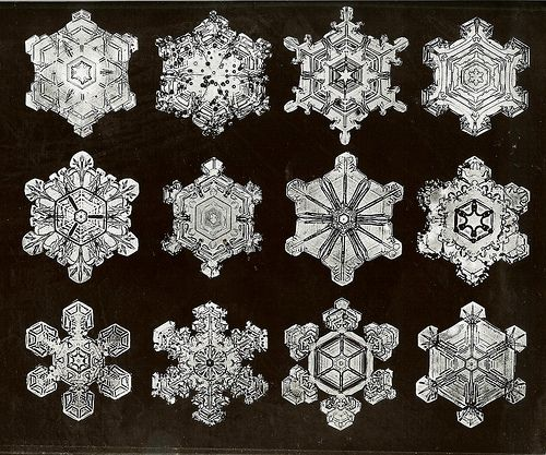 W.A. Bentley's Snow Crystals  http://loveinthesuburbs.com/wordpress/science-and-beauty