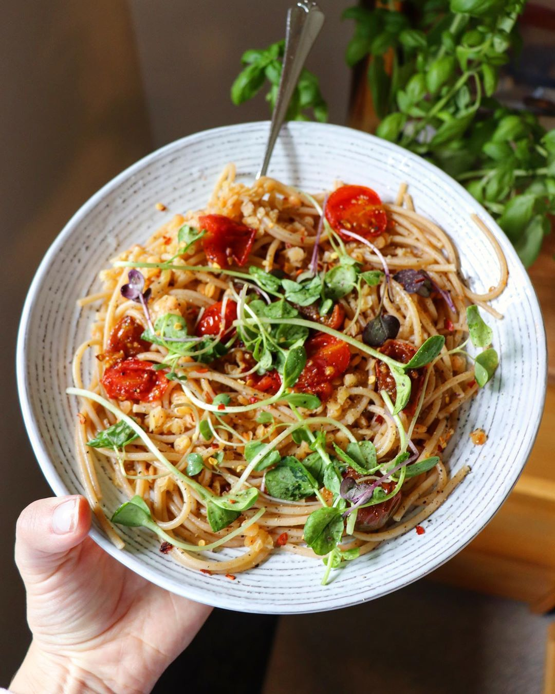 Whole Wheat Spaghetti With Red Lentils Tomatoes Sauteed With Garlic And Pepper And Some Micro Greens And Sprinkled With Pink Salt And Nutritional Yeast