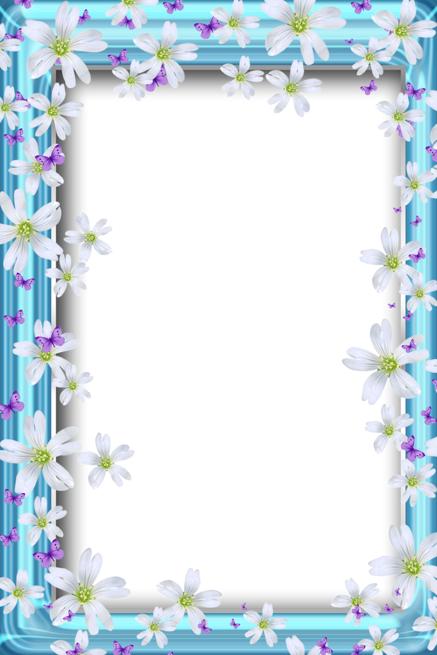 Transparent Bue Png Frame With Flowers And Butterflies Flower