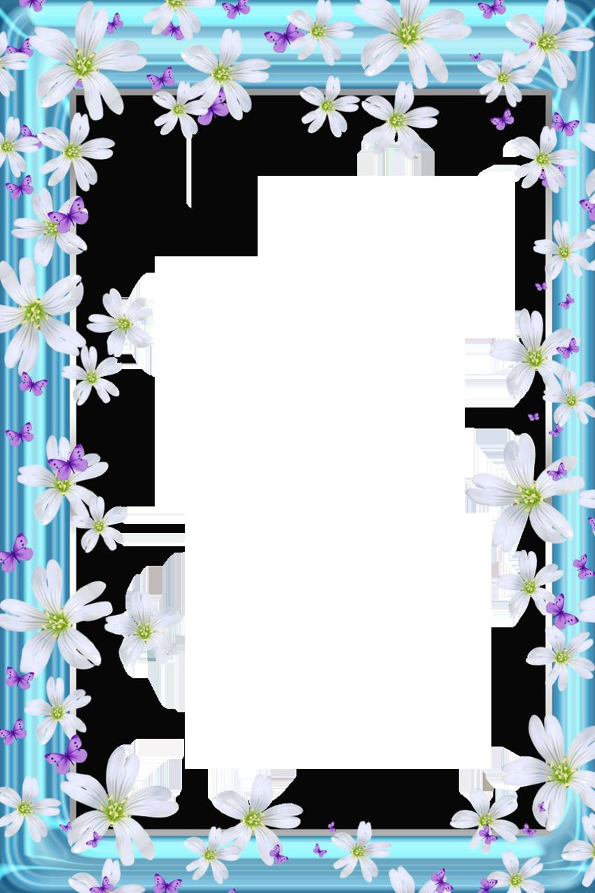 Pin by Silvana Cantagalli de Felice on FLORES | Flower ...