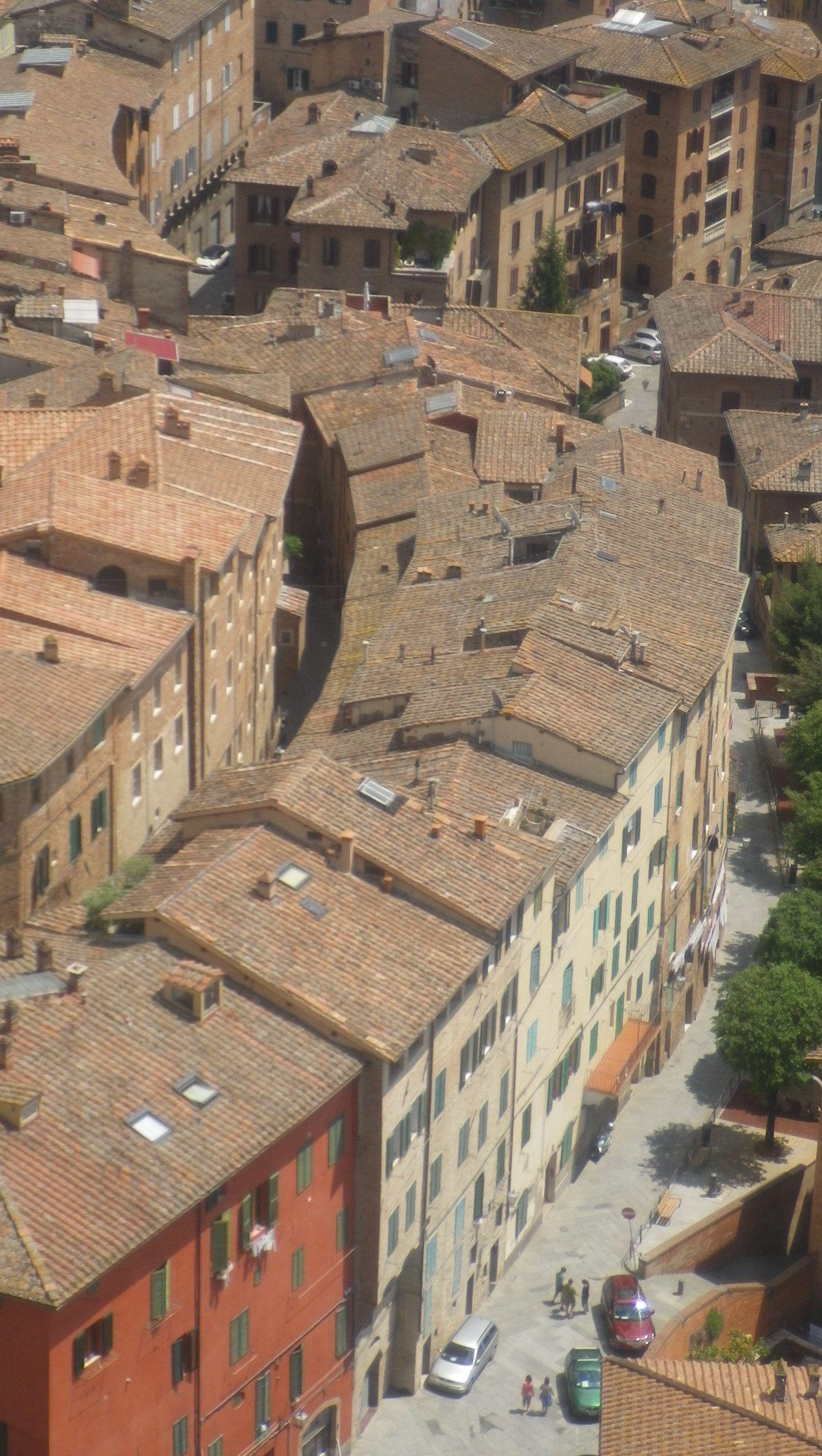 Sienne vu du campanile | City, Aerial, Photo