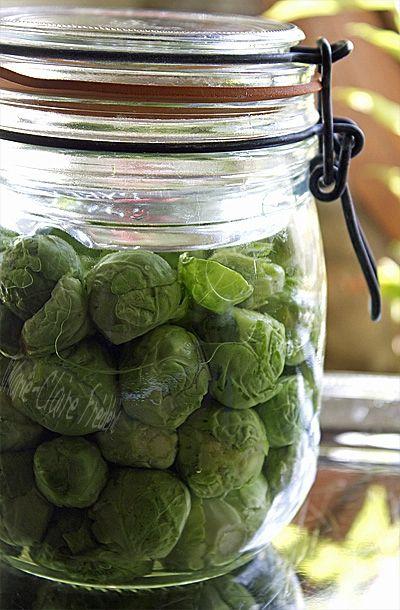 Comment fermenter les choux de bruxelles recipes choux - Comment cuisiner un choux vert ...