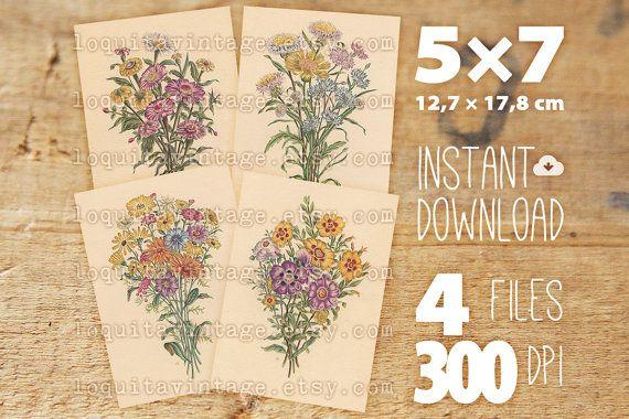 Instant Download Botanical Prints  set of 4 by LoquitaVintage