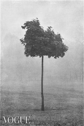 PhotoVogue. Barbara Olszewska-Chojnacka