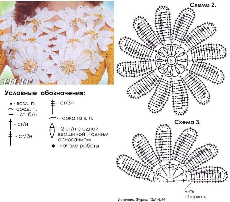 спортсменов адаптировано вязаные цветы крючком схемы с описанием фото пола это