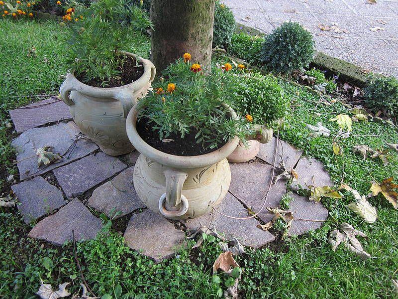 Bordure per un giardino cerca con google giardino - Abbellire il giardino fai da te ...