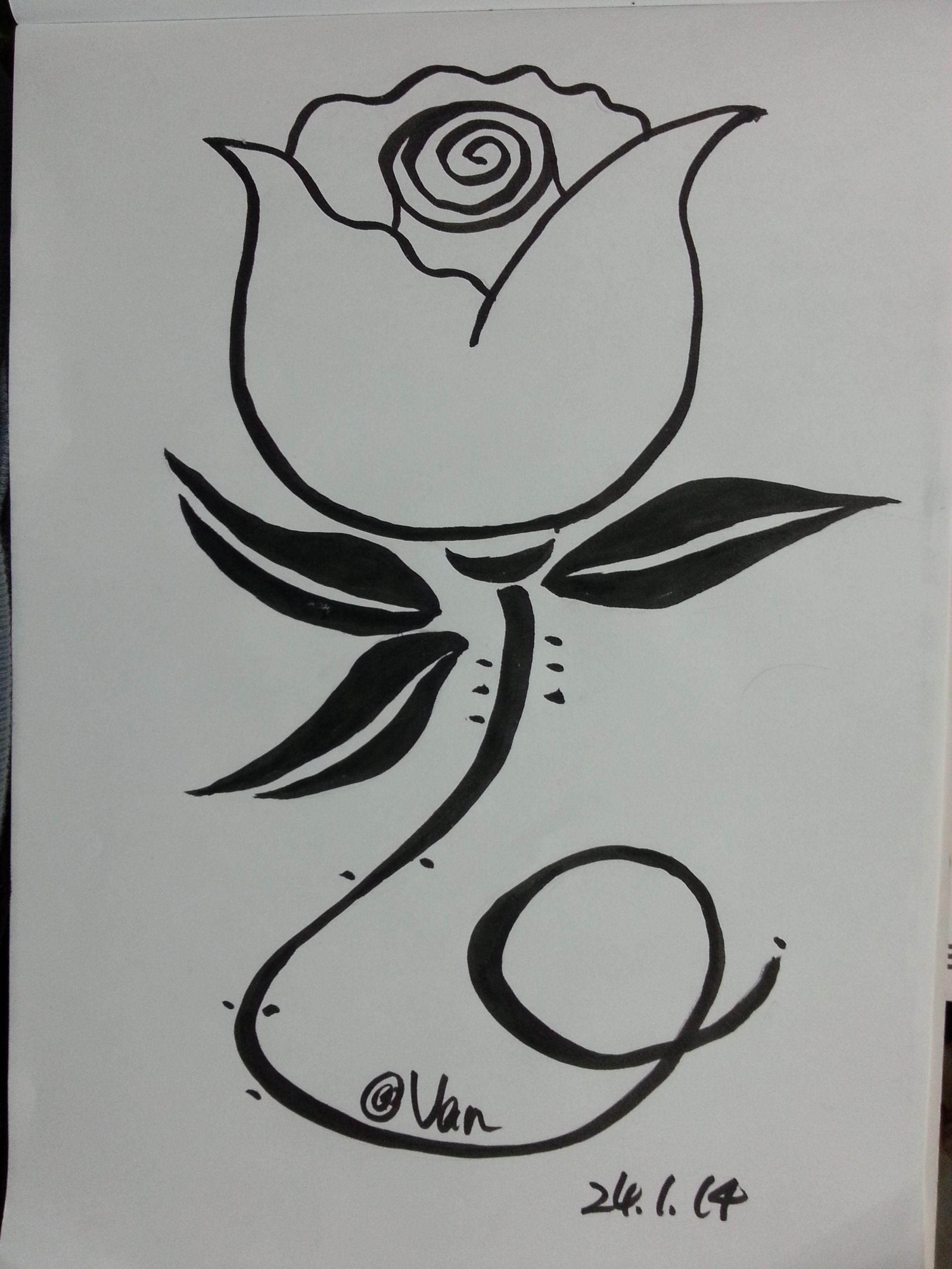 Big Head Rose Flower Drawing My Flower Drawings